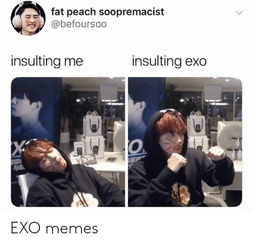 EXO: fat peach soopremacist  @befoursoo  insulting me  insulting exo  X  ng  ng EXO memes