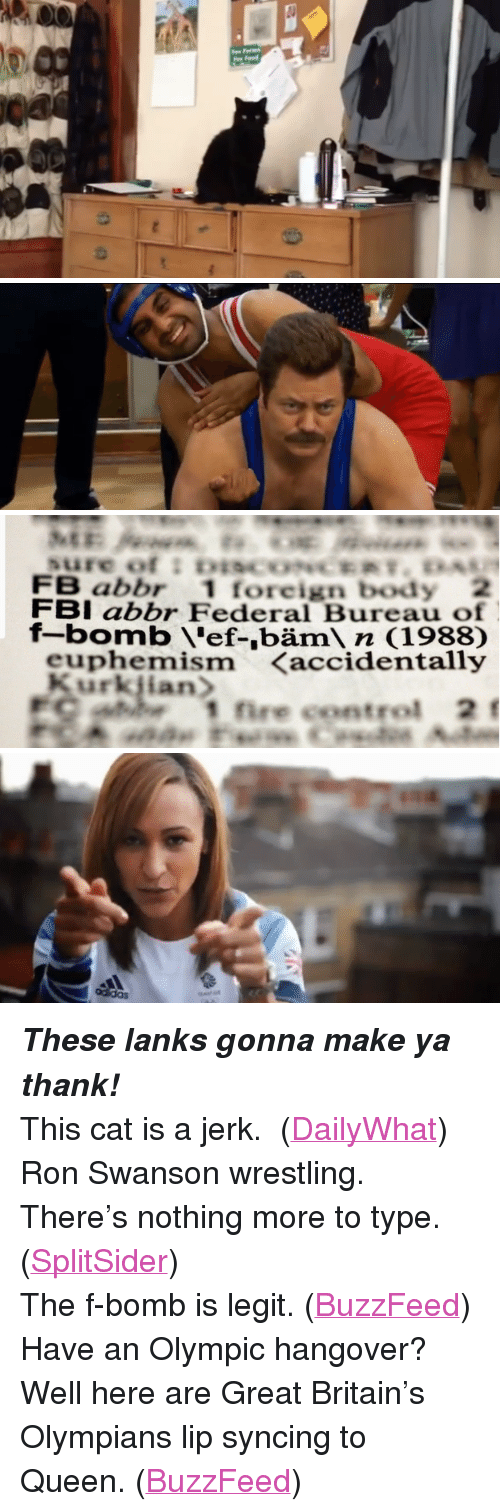 """Euphemism: FB abbr 1 foreign body 2  FBI abbr Federal Bureau of  f-bomb 'ef-,bäm n (1988)  euphemism <accidentally  1 fire control 2f <p><strong><em>These lanks gonna make ya thank!</em></strong></p> <p>This cat is a jerk. (<a href=""""http://cheezburger.com/40737793"""" target=""""_blank"""">DailyWhat</a>)</p> <p>Ron Swanson wrestling. There&rsquo;s nothing more to type. (<a href=""""http://splitsider.com/2012/08/some-of-your-fave-nbc-characters-have-silly-olympic-fun/"""" target=""""_blank"""">SplitSider</a>)</p> <p>The f-bomb is legit. (<a href=""""http://www.buzzfeed.com/andrewkaczynski/7-silly-slang-terms-that-are-now-officially-in-the"""" target=""""_blank"""">BuzzFeed</a>)</p> <p>Have an Olympic hangover? Well here are Great Britain&rsquo;s Olympians lip syncing to Queen. (<a href=""""http://www.buzzfeed.com/joefry/watch-brittains-olympic-team-sing-dont-stop-me-70dj"""" target=""""_blank"""">BuzzFeed</a>)</p>"""