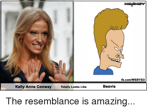 Conway, Politics, and fb.com: fb.com/WSBYSO  Kelly Anne Conway  Totally Looks Like  Beavis The resemblance is amazing...