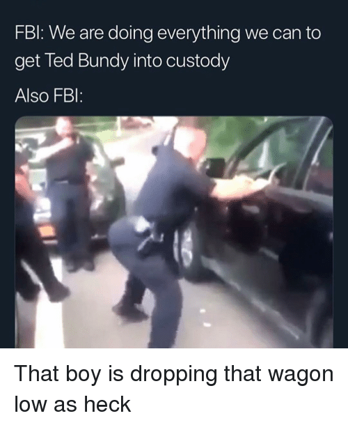 Fbi, Funny, and Ted: FBl: We are doing everything we can to  get Ted Bundy into custody  Also FBI: That boy is dropping that wagon low as heck