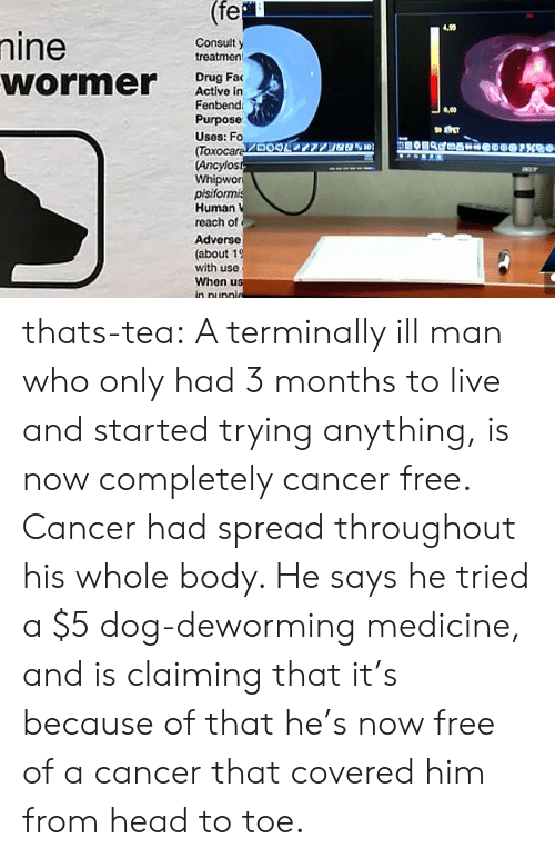 Head, Tumblr, and Blog: (fe  4.99  Consult y  treatmen  Drug Fa  Active in  Fenbend  Purpose  Uses: Fo  (Tox  Ancylos  Whipwor  pisifo  Human  reach of  Adverse  (about 1  with use  When us  ,00  59加 thats-tea:  A terminally ill man who only had 3 months to live and started trying anything, is now completely cancer free. Cancer had spread throughout his whole body. He says he tried a $5 dog-deworming medicine, and is claiming that it's because of that he's now free of a cancer that covered him from head to toe.