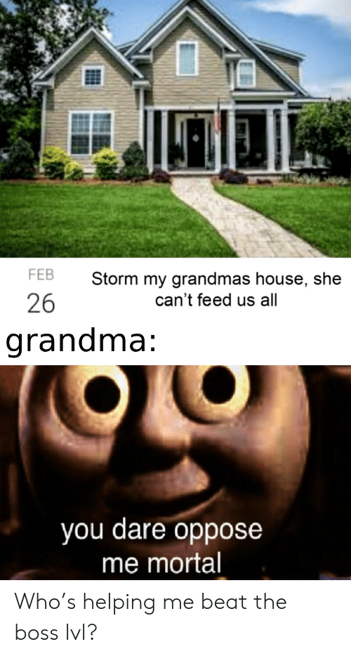 Grandma, House, and Boss: FEB  Storm my grandmas house, she  26  can't feed us all  grandma:  you dare oppose  me mortal Who's helping me beat the boss lvl?