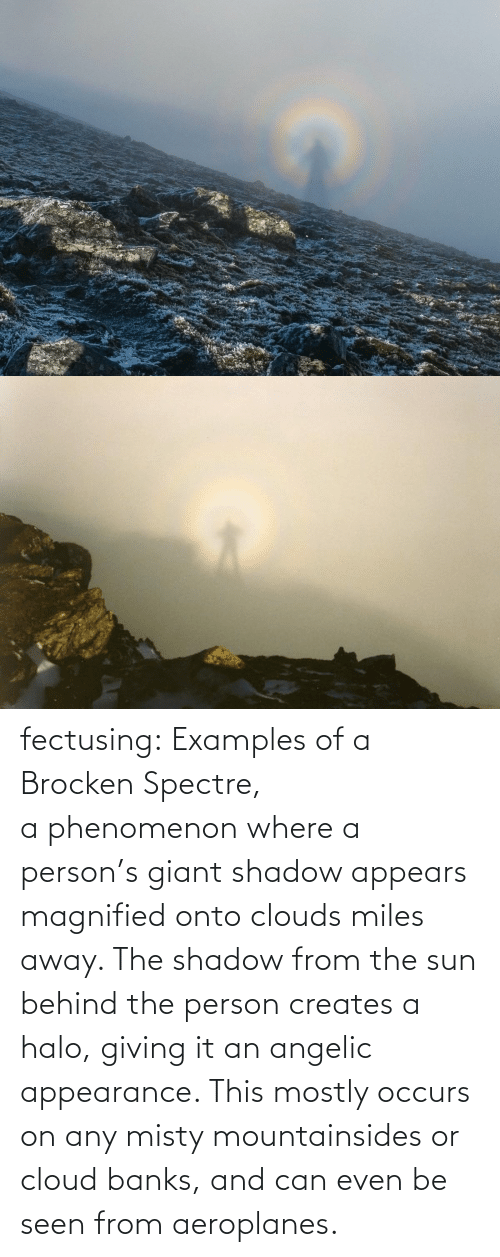 spectre: fectusing: Examples of a Brocken Spectre, a phenomenon where a person's giant shadow appears magnified onto clouds miles away. The shadow from the sun behind the person creates a halo, giving it an angelic appearance. This mostly occurs on any misty mountainsides or cloud banks, and can even be seen from aeroplanes.