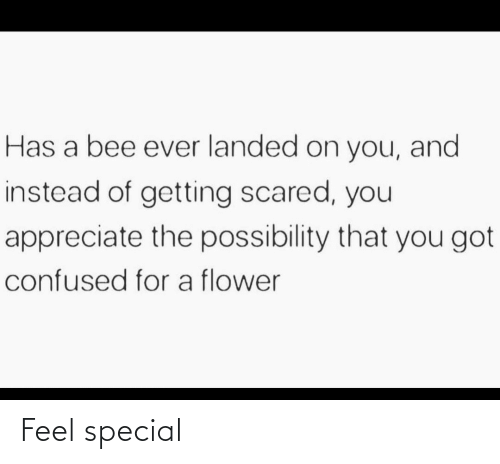 special: Feel special