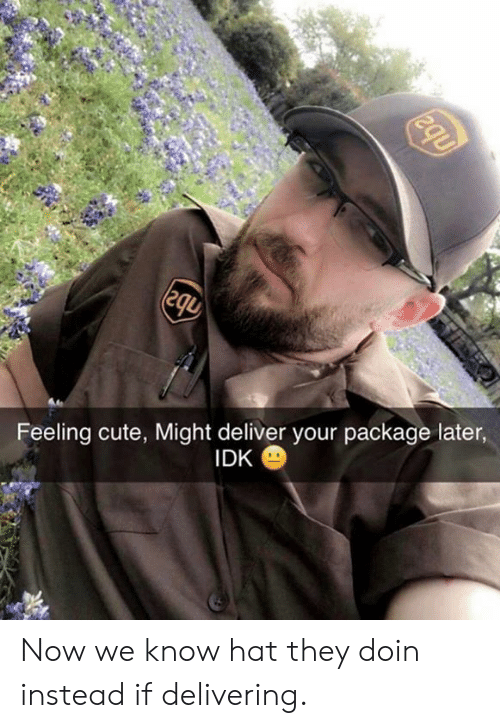 Cute, Dank, and 🤖: Feeling cute, Might deliver your package later,  IDK Now we know hat they doin instead if delivering.