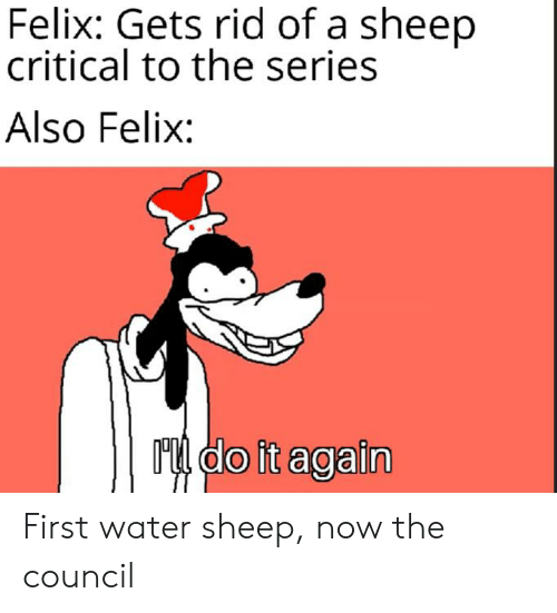 Water, Sheep, and First: Felix: Gets rid of a sheep  critical to the series  Also Felix:  Mdo it again First water sheep, now the council