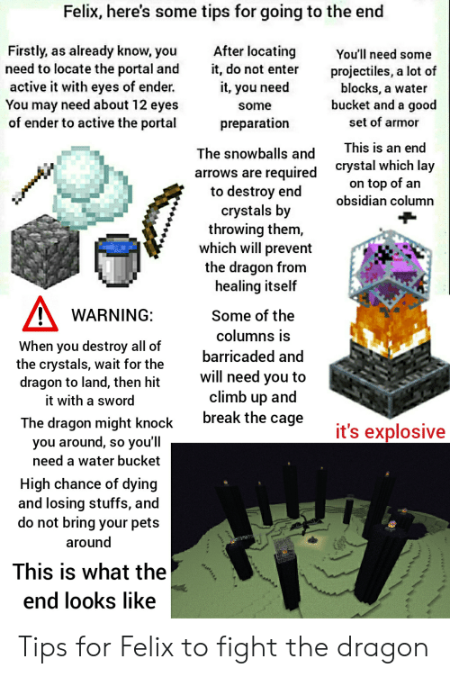 Break, Pets, and Good: Felix, here's some tips for going to the end  After locating  Firstly, as already know, you  need to locate the portal and  active it with eyes of ender.  You may need about 12 eyes  of ender to active the portal  You'll need some  it, do not enter  projectiles, a lot of  blocks, a water  bucket and a good  it, you need  some  set of armor  preparation  This is an end  The snowballs and  crystal which lay  on top of an  obsidian column  required  to destroy end  crystals by  throwing them,  which will prevent  the dragon from  healing itself  arrows are  WARNING:  Some of the  columns is  When you destroy all of  the crystals, wait for the  dragon to land, then hit  barricaded and  will need you to  climb up and  break the cage  it with a sword  The dragon might knock  you'll  it's explosive  you around,  need a water bucket  SO  High chance of dying  and losing stuffs, and  do not bring your pets  around  This is what the  end looks like  ww. Tips for Felix to fight the dragon