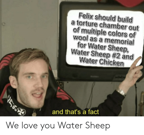 Love, Chicken, and Water: Felix should build  a torture chamber out  of multiple colors of  Wool as a memorial  for Water Sheep,  Water Sheep #2 and  Water Chicken  and that's a fact We love you Water Sheep