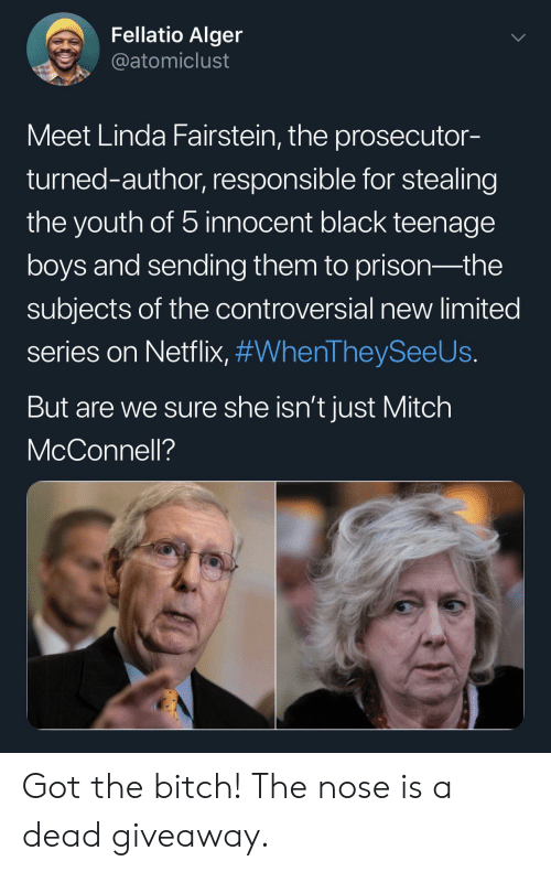 mitch: Fellatio Alger  @atomiclust  Meet Linda Fairstein, the prosecutor-  turned-author, responsible for stealing  the youth of 5 innocent black teenage  boys and sending them to prison-the  subjects of the controversial new limited  series on Netflix, #WhenTheySeeUs.  But are we sure she isn't just Mitch  McConnell? ‪Got the bitch! The nose is a dead giveaway.‬