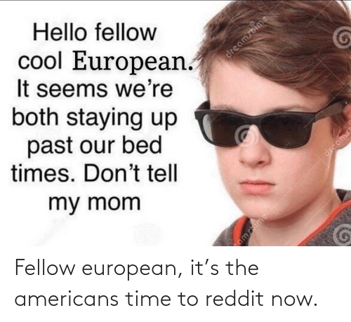 americans: Fellow european, it's the americans time to reddit now.