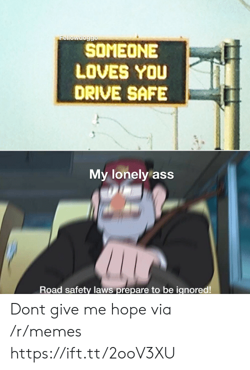 Ass, Memes, and Drive: Fellowdoggo  SOMEONE  LOVES YOU  DRIVE SAFE  My lonely ass  Road safety laws prepare to be ignored! Dont give me hope via /r/memes https://ift.tt/2ooV3XU