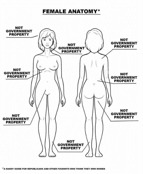 Dank, Women, and Government: FEMALE ANATOMY*  NOT  GOVERNMENT  PROPERTY  NOT  GOVERNMENT  NOT  GOVERNMENT  PROPERTY  PROPERTY  NOT  GOVERNMENT  PROPERTY  NOT  GOVERNMENT  PROPERTY  NOT  GOVERNMENT  PROPERTY  NOT  GOVERNMENT  PROPERTY  NOT  GOVERNMENT  PROPERTY  A HANDY GUIDE FOR REPUBLICANS AND OTHER FUCKWITS WHO THINK THEY OWN WOMEN