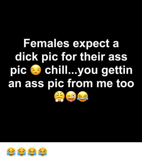 Ass, Chill, and Dick: Females expect a  dick pic for their ass  pic 3 chill...you gettin  an ass pic from me too 😂😂😂😂