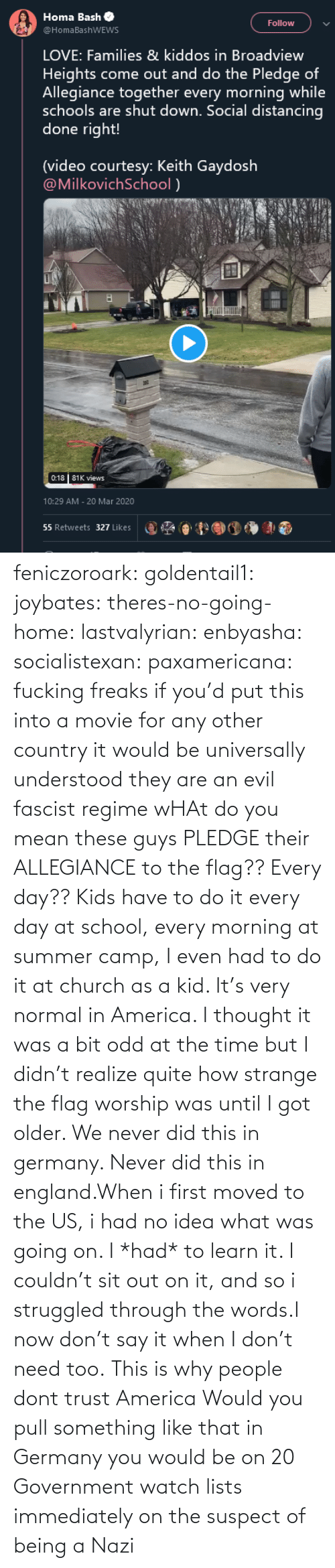 every day: feniczoroark:  goldentail1:  joybates:  theres-no-going-home:  lastvalyrian:  enbyasha:  socialistexan:  paxamericana: fucking freaks       if you'd put this into a movie for any other country it would be universally understood they are an evil fascist regime    wHAt do you mean these guys PLEDGE their ALLEGIANCE to the flag?? Every day??   Kids have to do it every day at school, every morning at summer camp, I even had to do it at church as a kid. It's very normal in America. I thought it was a bit odd at the time but I didn't realize quite how strange the flag worship was until I got older.    We never did this in germany. Never did this in england.When i first moved to the US, i had no idea what was going on. I *had* to learn it. I couldn't sit out on it, and so i struggled through the words.I now don't say it when I don't need too.   This is why people dont trust America    Would you pull something like that in Germany you would be on 20 Government watch lists immediately on the suspect of being a Nazi
