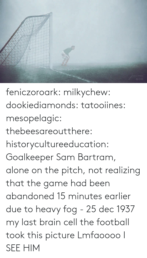 15 minutes: feniczoroark:  milkychew: dookiediamonds:  tatooiines:   mesopelagic:  thebeesareoutthere:  historycultureeducation: Goalkeeper Sam Bartram, alone on the pitch, not realizing that the game had been abandoned 15 minutes earlier due to heavy fog - 25 dec 1937 my last brain cell   the football took this picture    Lmfaoooo      I SEE HIM