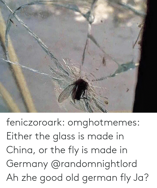 Germany: feniczoroark:  omghotmemes:  Either the glass is made in China, or the fly is made in Germany   @randomnightlord    Ah zhe good old german fly Ja?