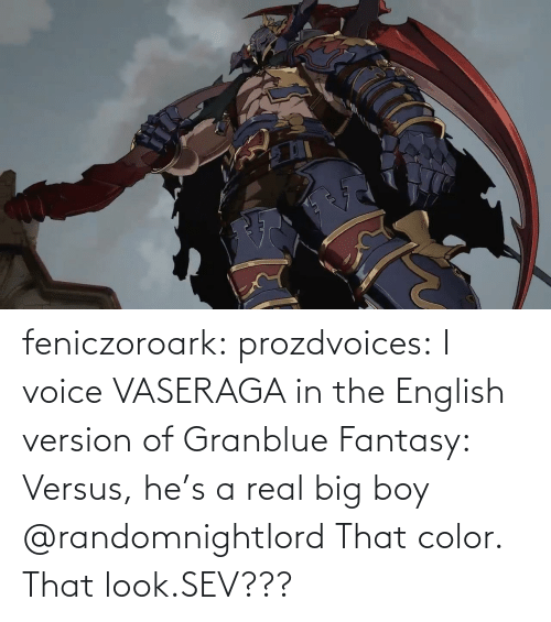 English: feniczoroark:  prozdvoices:  I voice VASERAGA in the English version of Granblue Fantasy: Versus, he's a real big boy     @randomnightlord    That color. That look.SEV???