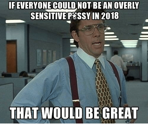 Memes, 🤖, and Sensitive: FEVERYONE COULD NOT BE AN OVERLY  SENSITIVE PESSY IN 2018  THAT WOULD BE GREAT