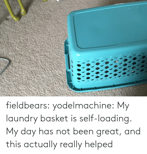 Laundry: fieldbears:  yodelmachine:  My laundry basket is self-loading.  My day has not been great, and this actually really helped