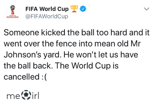johnsons: FIFA World CupL  FIFAWorldCup  Someone kicked the ball too hard and it  went over the fence into mean old Mr  Johnson's yard. He won't let us have  the ball back. The World Cup is  cancelled :( me⚽irl
