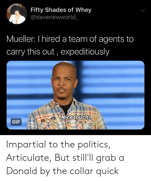impartial: Fifty Shades of Whey  @davenewworld_  Mueller: I hired a team of agents to  carry this out, expeditiously  Nice touch!  GIF Impartial to the politics, Articulate, But still'll grab a Donald by the collar quick