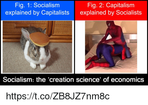Capitalism, Science, and Socialism: Fig. 1: Socialism  explained by Capitalists  Fig. 2: Capitalism  explained by Socialists  Socialism: the creation science of economics https://t.co/ZB8JZ7nm8c