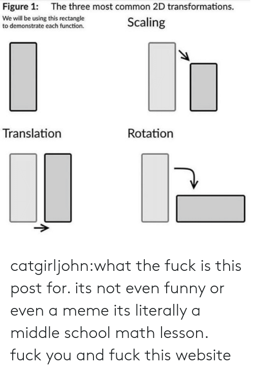 Scaling: Figure 1:  The three most common 2D transformations.  We will be using this rectangle  to demonstrate each function.  Scaling  Translation  Rotation catgirljohn:what the fuck is this post for. its not even funny or even a meme its literally a middle school math lesson. fuck you and fuck this website