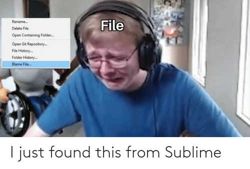 blame: File  Rename..  Delete File  Open Containing Folder..  Open Git Repository.  File History.  Folder History..  Blame File.. I just found this from Sublime