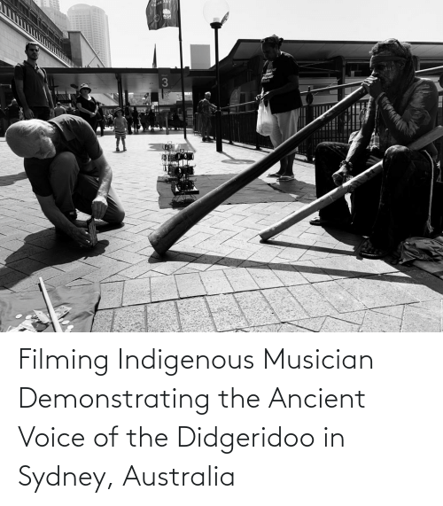 indigenous: Filming Indigenous Musician Demonstrating the Ancient Voice of the Didgeridoo in Sydney, Australia