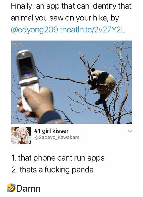 Fucking, Memes, and Phone: Finally: an app that can identify that  animal you saw on your hike, by  @edyong209 theatln.tc/2v27Y2L  #1 girl kisser  @Sadayo_Kawakami  1. that phone cant run apps  2. thats a fucking panda 🤣Damn