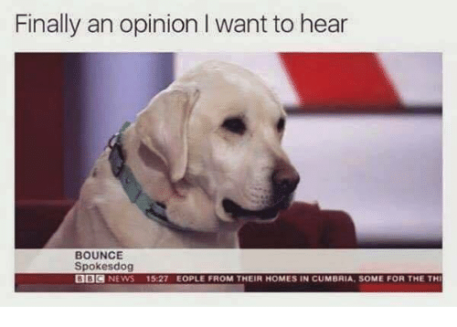 Opinionating: Finally an opinion I want to hear  BOUNCE  Spokesdog  BBC  NEWS  15:27 EOPLE FROM THEIR HOMES IN CUMBRIA, SOME FOR THE THI