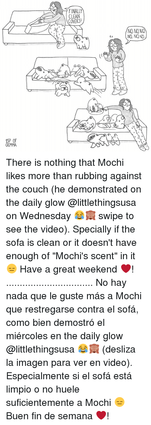 "Great Weekend: FINALLY  CLEAN  COVERS!  NO NO NQ  NO, NO NO  G'  @勾  57 OF  GEMMA There is nothing that Mochi likes more than rubbing against the couch (he demonstrated on the daily glow @littlethingsusa on Wednesday 😂🙈 swipe to see the video). Specially if the sofa is clean or it doesn't have enough of ""Mochi's scent"" in it 😑 Have a great weekend ❤️! ................................ No hay nada que le guste más a Mochi que restregarse contra el sofá, como bien demostró el miércoles en the daily glow @littlethingsusa 😂🙈 (desliza la imagen para ver en video). Especialmente si el sofá está limpio o no huele suficientemente a Mochi 😑 Buen fin de semana ❤️!"