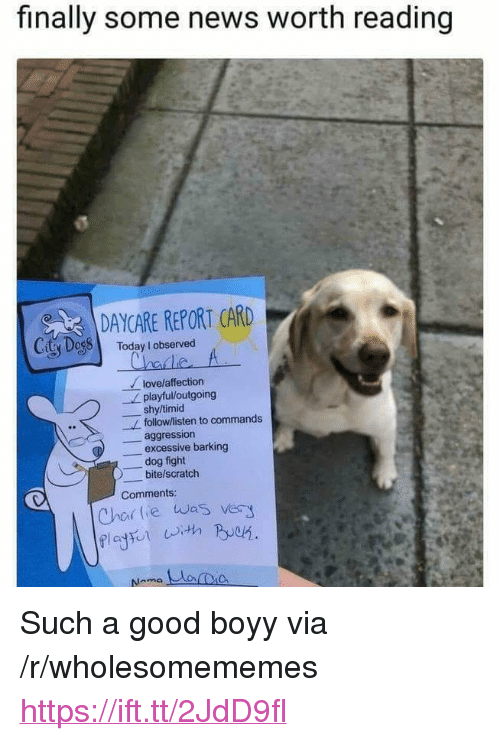 """report card: finally some news worth reading  DAYCARE REPORT CARD  CitSDessl  Today I observed  lovelaffection  shy/timid  aggression  playful/loutgoing  follow/listen to commands  -excessive barking  dog fight  bite/scratch  Comments  Chor lie was very <p>Such a good boyy via /r/wholesomememes <a href=""""https://ift.tt/2JdD9fl"""">https://ift.tt/2JdD9fl</a></p>"""