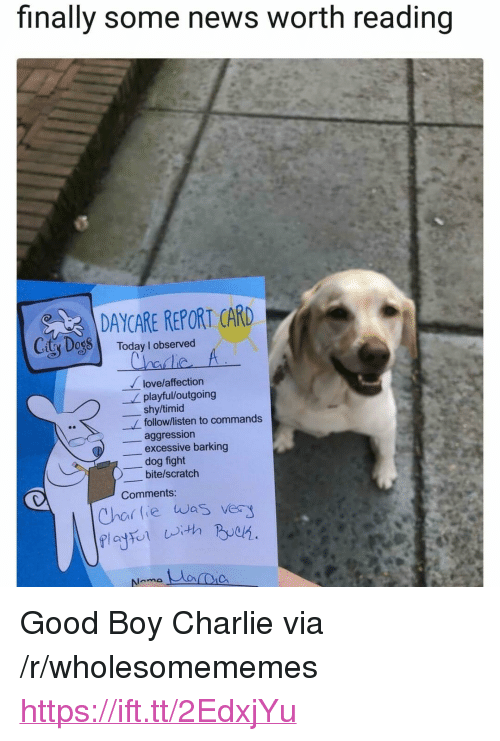 """report card: finally some news worth reading  DAYCARE REPORT CARD  City Dog8 Today I observed  love/affection  playful/outgoing  shy/timid  follow/listen to commands  aggression  excessive barking  dog fight  )-bite/scratch  Comments:  Char lie was ver <p>Good Boy Charlie via /r/wholesomememes <a href=""""https://ift.tt/2EdxjYu"""">https://ift.tt/2EdxjYu</a></p>"""