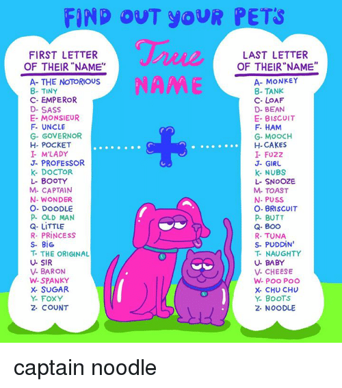 "Boo, Booty, and Butt: FIND OUT YOUR PETS  FIRST LETTER  OF THEIR""NAME""  LAST LETTER  OF THEIR""NAME""  NAME  A- THE NOTORIOUS  8- TINY  C- EMPEROR  D- SASS  E- MONSIEUR  F- UNCLE  G- GOVERNOR  H- POCKET  I M'LADY  J- PROFESSOR  K- DOCTOR  L- BOOTY  M- CAPTAIN  N- WONDER  O. DOODLE  P OLD MAN  Q- LITTLE  R- PRINCESS  S- BiG  T- THE ORIGINAL  U- SIR  V- BARON  W-SPANKY  X- SUGAR  Y- FOXY  2- COUNT  A- MONKEY  8- TANK  C- LOAF  D- BEAN  E- BISCUIT  F HAM  G- MOOCH  H- CAKES  I- FUZZ  J- GIRU  k- NUBS  L- SNOOZE  M- TOAST  N- PUSS  O- BRISCOIT  P BUTT  Q- Boo  R- TUNA  S- PUDDIN  T- NAUGHTY  U- BABY  V- CHEESE  X- CHU CHU  Y. BoOTS  2- NOODLE captain noodle"