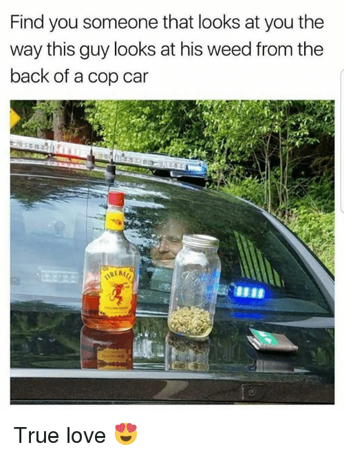 Copping: Find you someone that looks at you the  way this guy looks at his weed from the  back of a cop car True love 😍