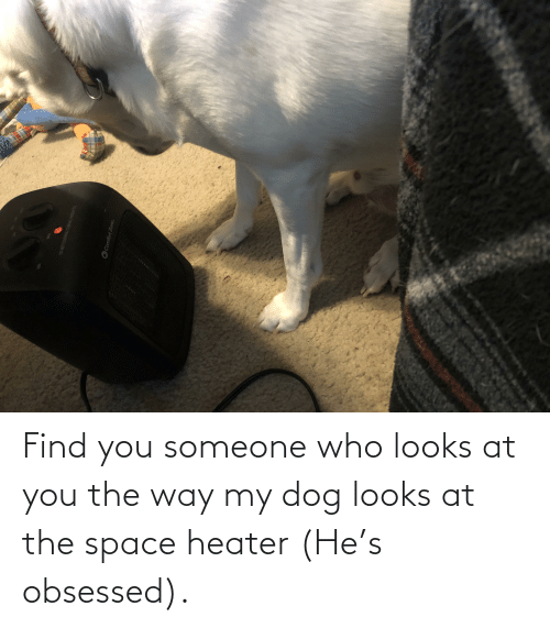obsessed: Find you someone who looks at you the way my dog looks at the space heater (He's obsessed).