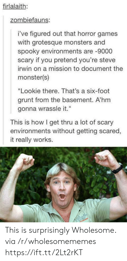 """Monster, Steve Irwin, and Games: firlalaith:  zombiefauns:  i've figured out that horror games  with grotesque monsters and  spooky environments are 9000  scary if you pretend you're steve  irwin on a mission to document the  monster(s)  """"Lookie there. That's a six-foot  grunt from the basement. A'hm  gonna wrassle it.""""  This is how I get thru a lot of scary  environments without getting scared,  it really works.  rocodile  unter This is surprisingly Wholesome. via /r/wholesomememes https://ift.tt/2Lt2rKT"""