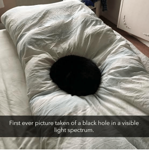Memes, Taken, and Black: First ever picture taken of a black hole in a visible  light spectrum