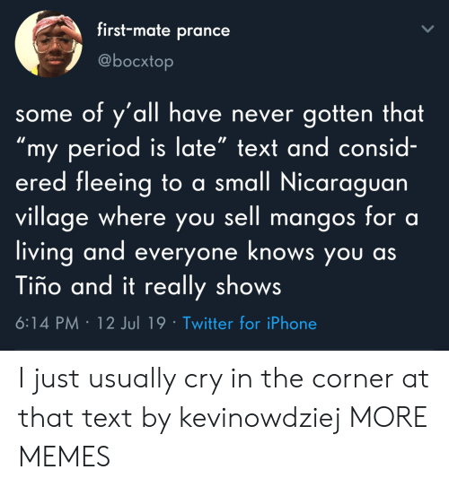 "Dank, Iphone, and Memes: first-mate prance  @bocxtop  some of y'all have never gotten that  ""my period is late"" text and consid-  ered fleeing to a small Nicaraguan  village where you sell mangos for a  living and everyone knows you as  Tiño and it really shows  6:14 PM 12 Jul 19 Twitter for iPhone I just usually cry in the corner at that text by kevinowdziej MORE MEMES"