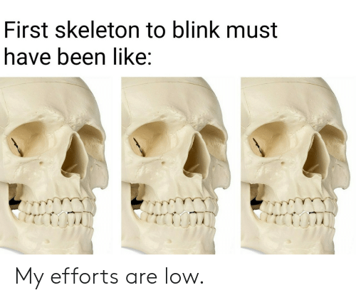 Efforts: First skeleton to blink must  have been like: My efforts are low.