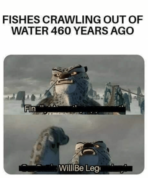 Memes, Water, and 🤖: FISHES CRAWLING OUT OF  WATER 460 YEARS AGO  Fin  WillBe Leg