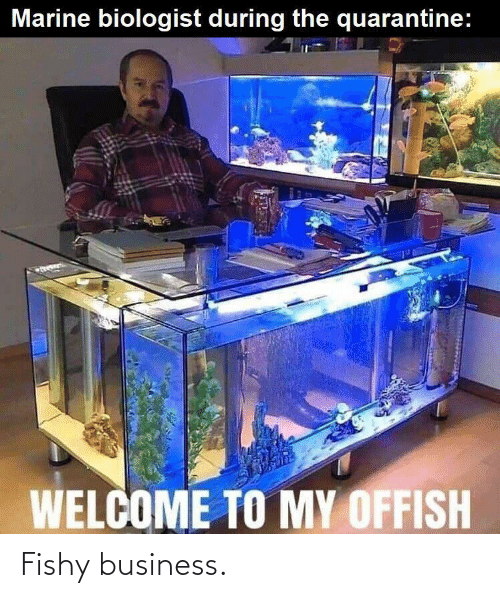 Business: Fishy business.