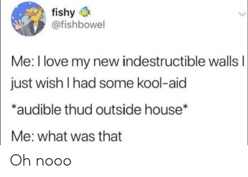 What Was That: fishy  @fishbowel  Me: I love my new indestructible wallsI  just wish I had some kool-aid  *audible thud outside house*  Me: what was that Oh nooo