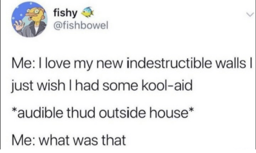 What Was That: fishy  @fishbowel  Me: I love my new indestructible wallsI  just wish I had some kool-aid  *audible thud outside house*  Me: what was that