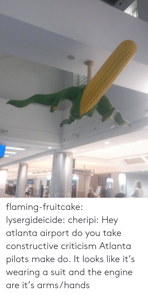 Tumblr, Blog, and Http: flaming-fruitcake: lysergideicide:  cheripi: Hey atlanta airport do you take constructive criticism Atlanta pilots make do.   It looks like it's wearing a suit and the engine are it's arms/hands