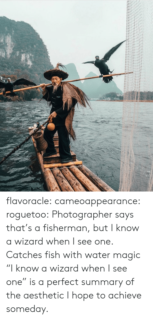 "Target, Tumblr, and Aesthetic: flavoracle: cameoappearance:  roguetoo: Photographer says that's a fisherman, but I know a wizard when I see one.  Catches fish with water magic   ""I know a wizard when I see one"" is a perfect summary of the aesthetic I hope to achieve someday."