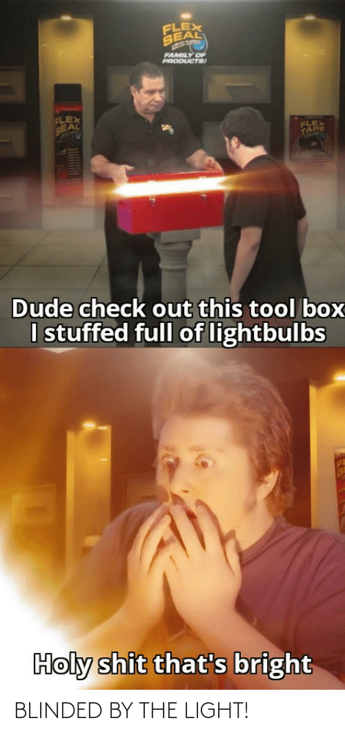 Dude, Family, and Flexing: FLEX  SEAL  FAMILY OF  PRODUCTS!  FLEX  SEAL  FLEX  TAPE  Dude check out this tool box  I stuffed full of lightbulbs  Holy shit that's bright BLINDED BY THE LIGHT!