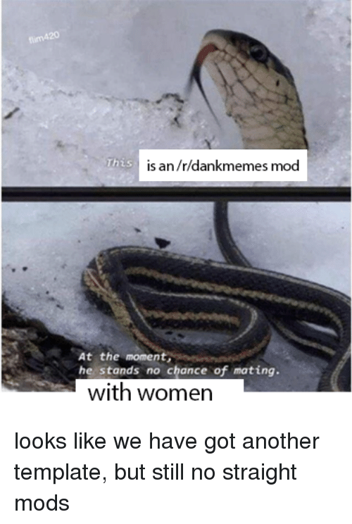 Women, Dank Memes, and Got: flim420  This  is an/r/dankmemes mod  At the moment,  he stands no chance of mating  with women