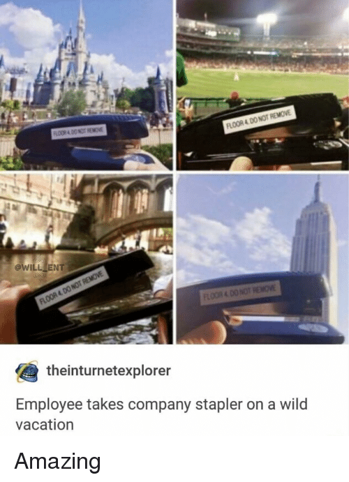 Memes, Vacation, and Wild: FLOOR 4 DO NOT REMOVE  @WILL ENT  theinturnetexplorer  Employee takes company stapler on a wild  vacation Amazing